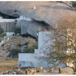 historical temple of Leopard